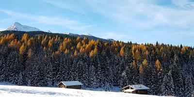 Offerta settimana bianca a Dicembre in Val di Fiemme