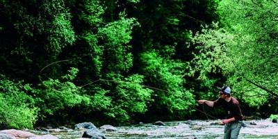 Offerta Pesca sul Fiume Sarca in Val Rendena